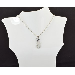 Necklace Pendant Brushed steel Shiny 61100